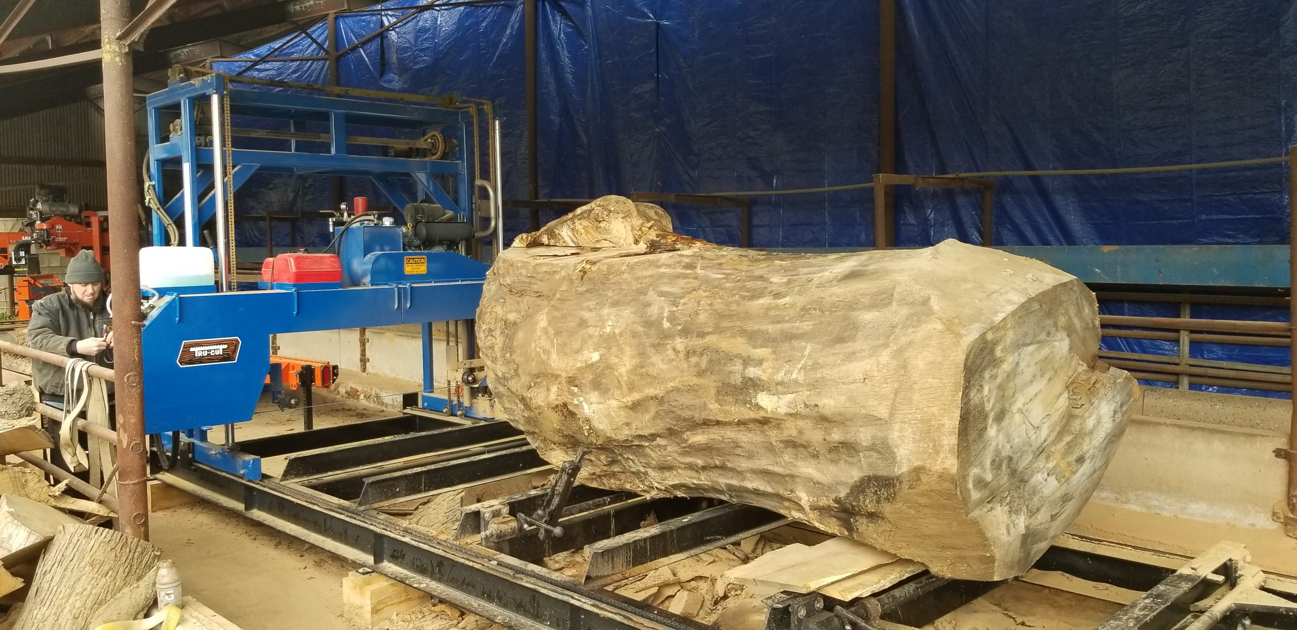 log loaded on saw mill