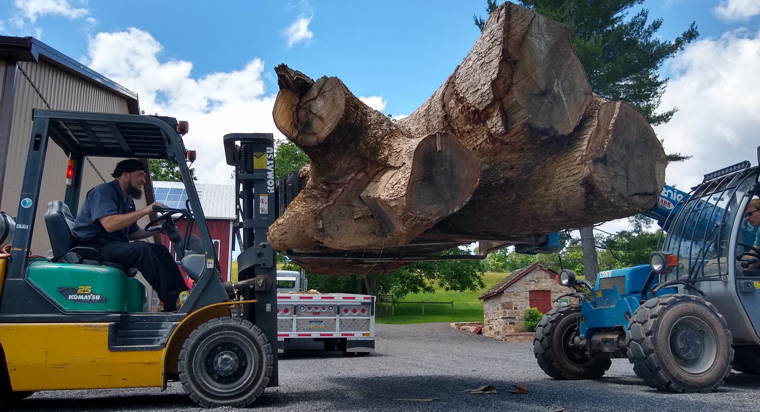large tree trunk loaded on forklift