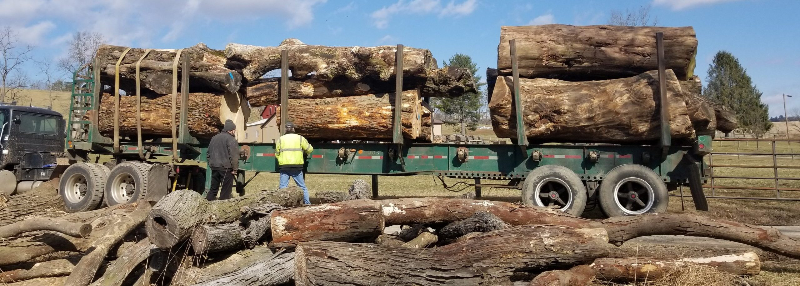 logs loaded on flatbed truck