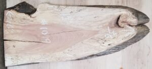 spalted beech diagonal cut