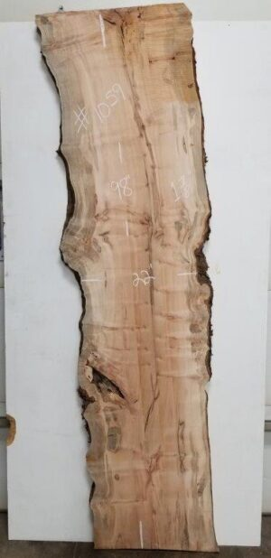 burly maple slab